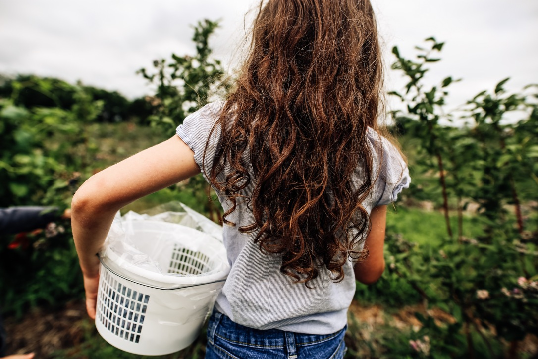 Girl long hair blueberry patch kansas city summer