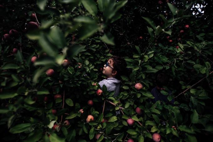 Family Adventure | Cider Hill Family Orchard | Kansas City FamilyPhotographer