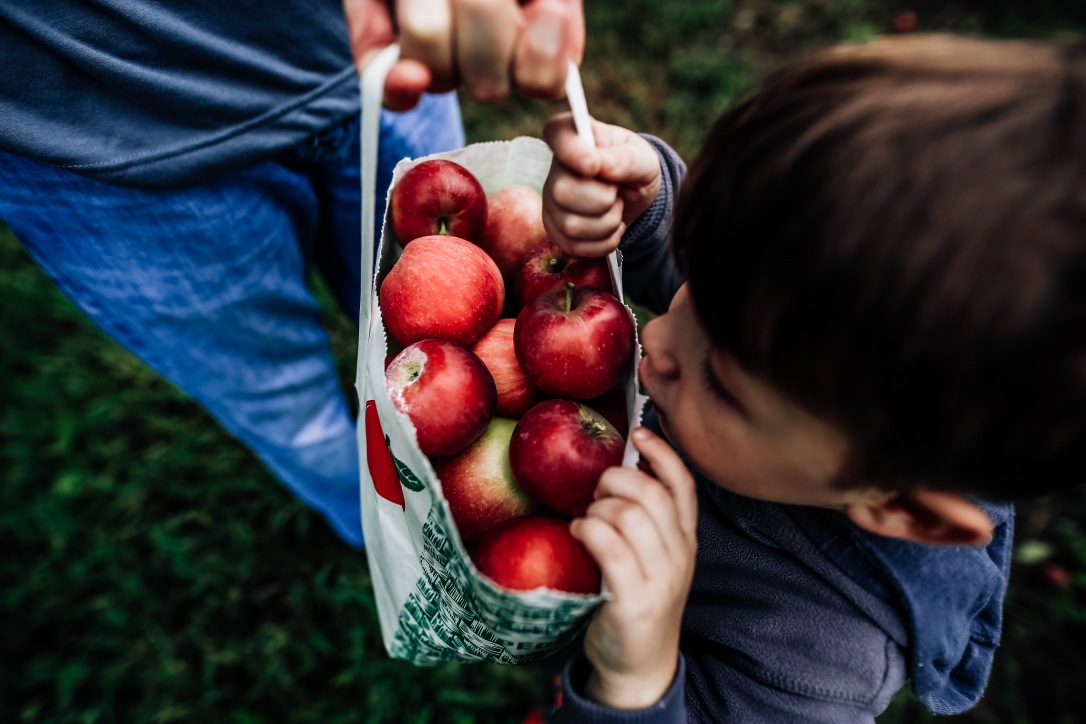 CIder Hill Family Orchard Kansas City Apple Picking Family Documentary Storytelling Photography Fall